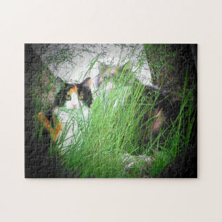 Camo cats or make your own jigsaw puzzle