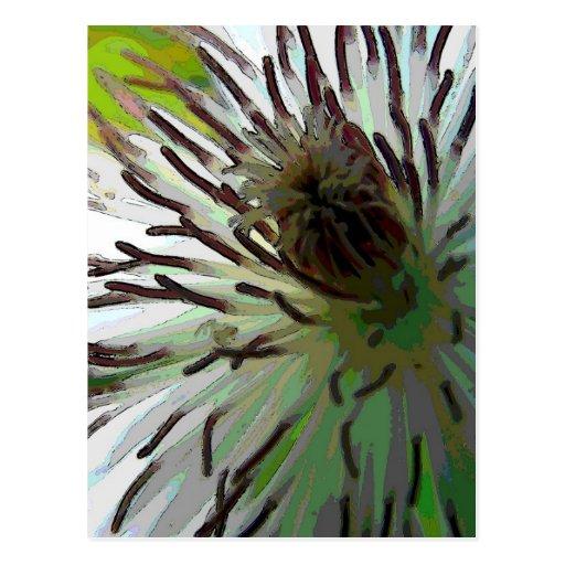 camo-flower2 postal