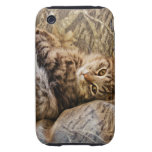 CAMO KITTY CAT iPhone 3 TOUGH CASES