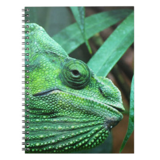 CAMO LIZARD NOTEBOOK