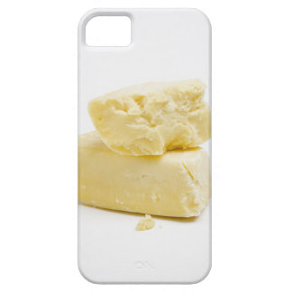 camody gourmet cheese iPhone SE/5/5s case