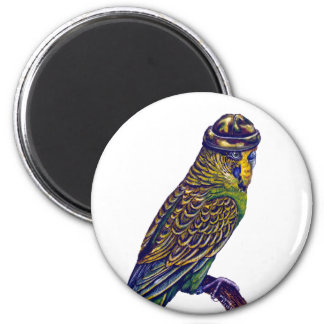Camoflage Budgie Magnet