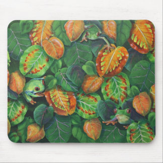 Camoflagued Mouse Pad