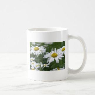 Camomiles Mugs