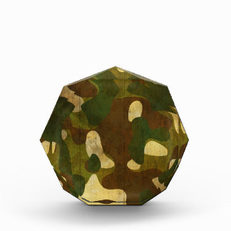 Camouflage Award