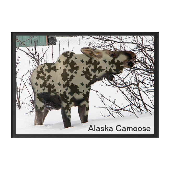 Camouflage Moose (Camoose)