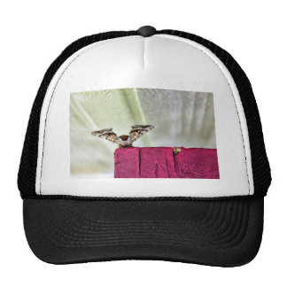 Camouflage moth mesh hats