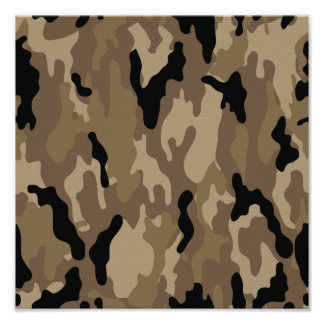 Camouflage Posters