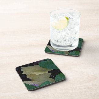CAMOUFLAGE WITH LEAVES IN EARLY FALL DRINK COASTER