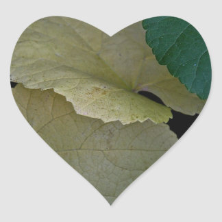 CAMOUFLAGE WITH LEAVES IN EARLY FALL HEART STICKER