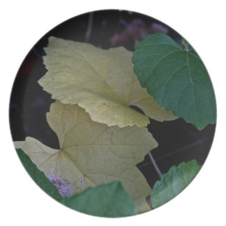 CAMOUFLAGE WITH LEAVES IN EARLY FALL MELAMINE PLATE