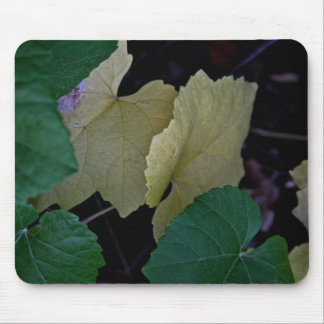 CAMOUFLAGE WITH LEAVES IN EARLY FALL MOUSE PAD