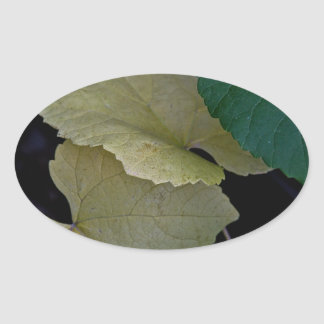 CAMOUFLAGE WITH LEAVES IN EARLY FALL OVAL STICKER