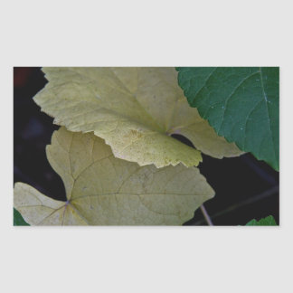 CAMOUFLAGE WITH LEAVES IN EARLY FALL RECTANGULAR STICKER