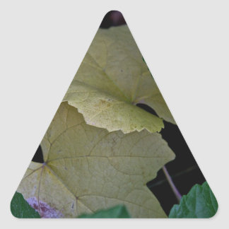 CAMOUFLAGE WITH LEAVES IN EARLY FALL TRIANGLE STICKER