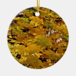 CAMOUFLAGE WITH LEAVES IN LATE FALL ORNAMENT