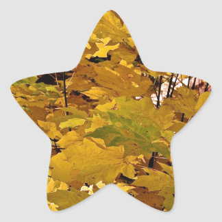 CAMOUFLAGE WITH LEAVES IN LATE FALL STAR STICKER
