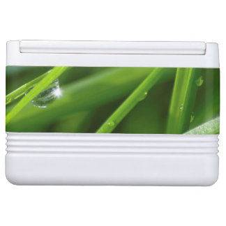 Camouflaged Grassy Green Eco-design Drink Cooler