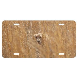 Camouflaged Yellow Labrador Retriever License Plate