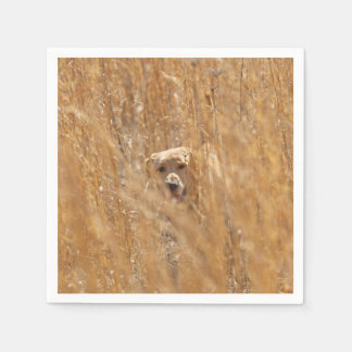 Camouflaged Yellow Labrador Retriever Napkin