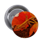 Camouflaging Crested Gecko 2 Inch Round Button