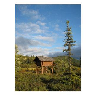 Camp Denali Cache Postcard