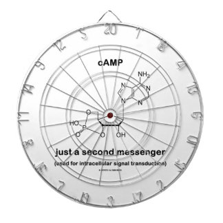 cAMP Molecule Just A Second Messenger Dartboards