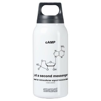 cAMP Molecule Just A Second Messenger SIGG Thermo 0.3L Insulated Bottle