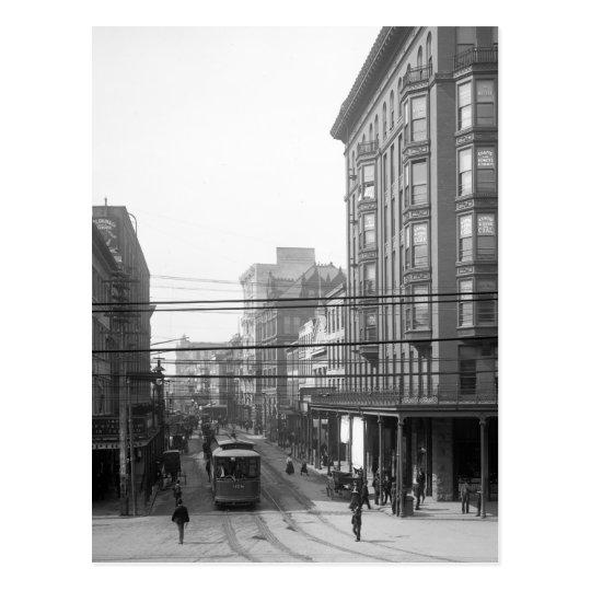 Camp Street, New Orleans: 1906 Postcard