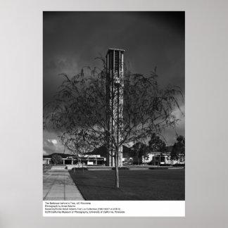 Campanario de UCR de Ansel Adams Posters