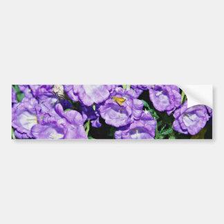 Campanas de Cantorbery flor bienal común resisten Etiqueta De Parachoque