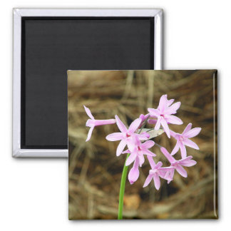 Campanitas photography of Flores 2 Inch Square Magnet
