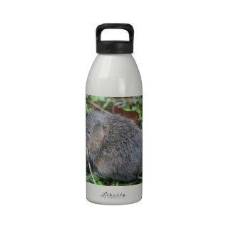 Campañol de agua botella de agua reutilizable