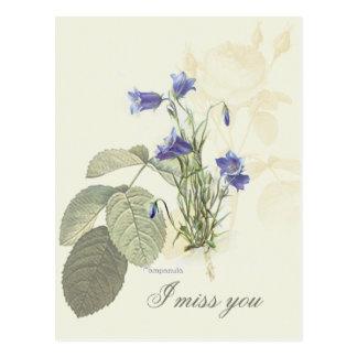 Campanula azul botánico 1 tarjeta postal