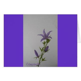 Campanula Flower Greeting Cards