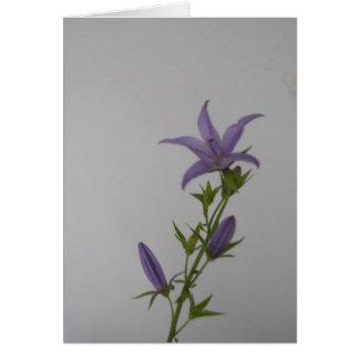 Campanula Flower Greeting Card