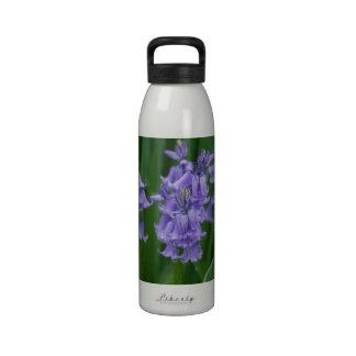 Campanula Water Bottles