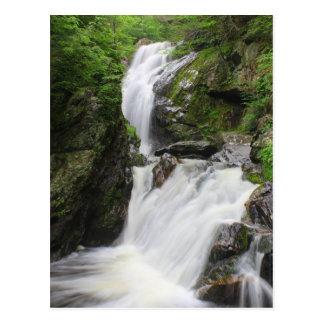 Campbell Falls Berkshires Waterfall Postcard