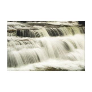 Campbell Falls, West Virginia Canvas Print