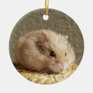 Campbells Dwarf Russian Hamster Ceramic Ornament
