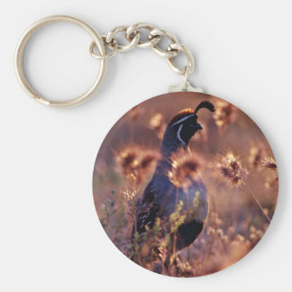 Campbells Quail Pink flowers Basic Round Button Keychain