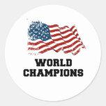 Campeones del mundo de la bandera americana etiqueta redonda