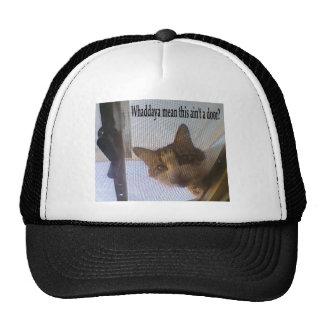 Camper Cat Hat