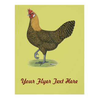 Campine:  Golden Hen Flyer
