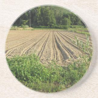 Campo arado a finales de la tarde en Toscana Posavasos Diseño