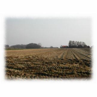 Campo arado en invierno. Escénico Adorno Fotoescultura