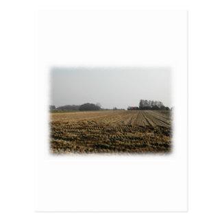 Campo arado en invierno. Escénico Postal