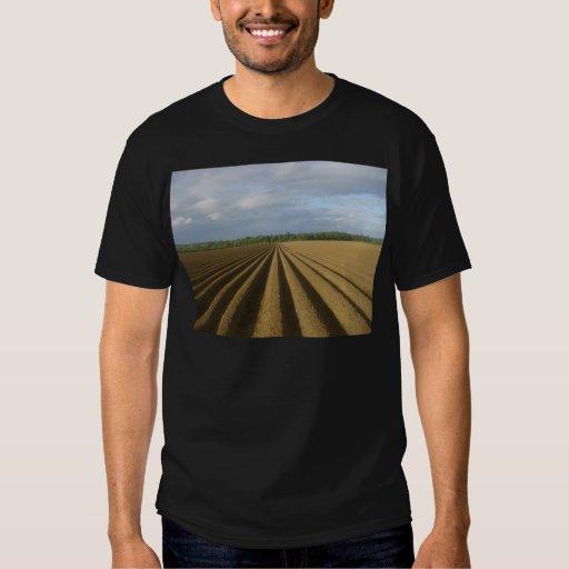 campo arado poleras
