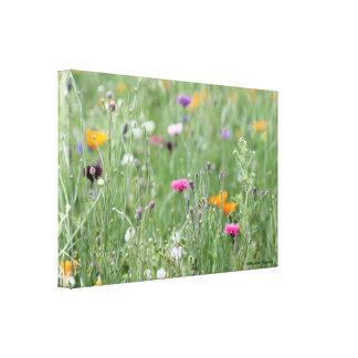 Campo bonito del prado de la flor salvaje del © P  Impresión De Lienzo