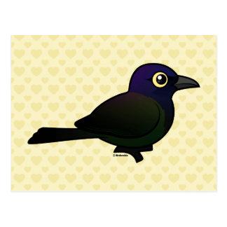 Campo común Grackle de Birdorable Postal